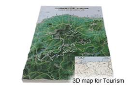 3D Print of Daisen-Oki Naitonal Park